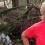 Branson's Virgin Group Buys Hurricane-Wrecked Solar Farm to Help Rebuild Caribbean