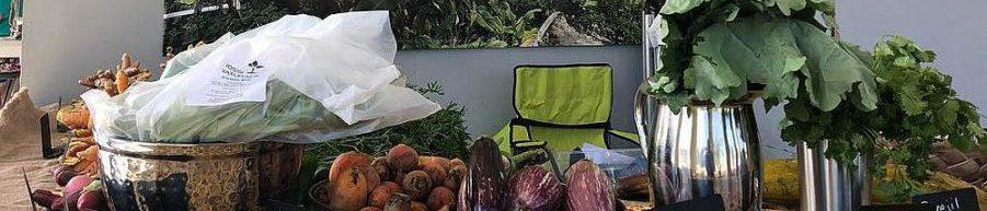Organic Caribbean Urban Farms