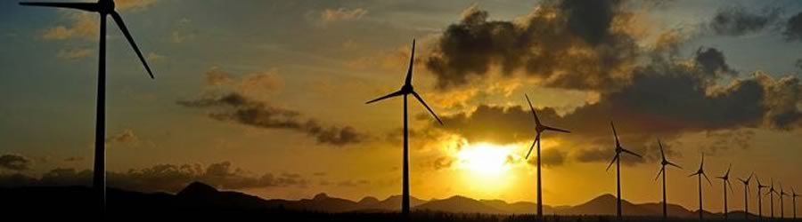 The Caribbean Shows the Way to a Renewable Future
