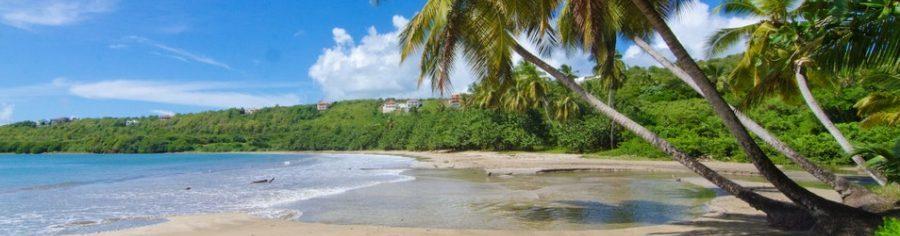 Future proofing Caribbean tourism