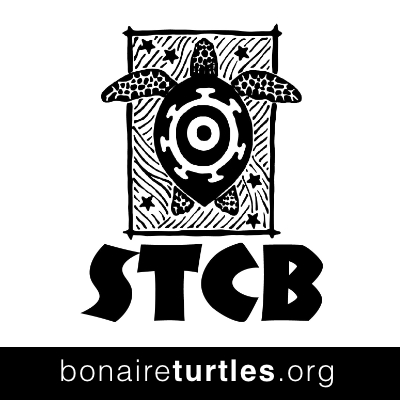 Sea Turtle Conservation in Bonaire