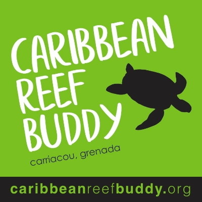 Caribbean Reef Buddy in Grenada