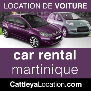 rent a car at Point du Bout in Martinique