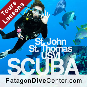 scuba diving saint thomas us virgin islands caribbean