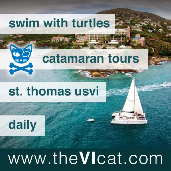 the vi cat catamaran sail snorkel st. thomas usvi caribbean
