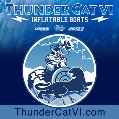 ThunderCat VI Inflatable Boats